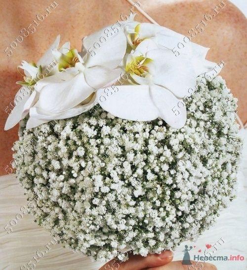 Фото 55224 в коллекции мои фотографии - Свадебный распорядитель Ольга Фокс