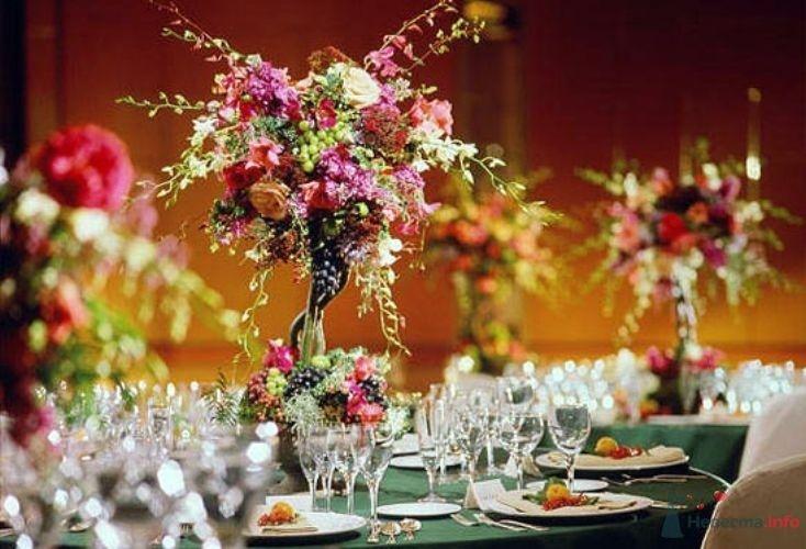 Фото 55233 в коллекции мои фотографии - Свадебный распорядитель Ольга Фокс