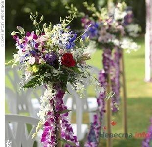 Фото 55996 в коллекции мои фотографии - Свадебный распорядитель Ольга Фокс