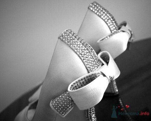Фото 56085 в коллекции мои фотографии - Свадебный распорядитель Ольга Фокс