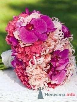 Фото 57310 в коллекции мои фотографии - Свадебный распорядитель Ольга Фокс