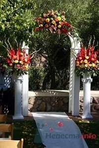Фото 57502 в коллекции мои фотографии - Свадебный распорядитель Ольга Фокс