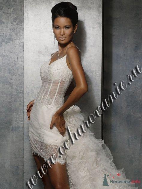 Фото 61148 в коллекции мои фотографии - Свадебный распорядитель Ольга Фокс