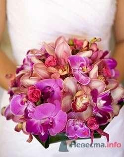 Фото 64402 в коллекции мои фотографии - Свадебный распорядитель Ольга Фокс