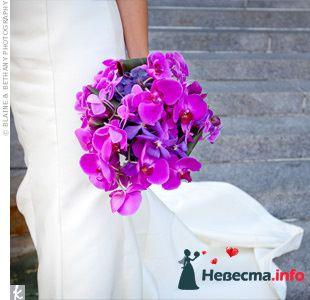 Фото 111946 в коллекции мои фотографии - Свадебный распорядитель Ольга Фокс