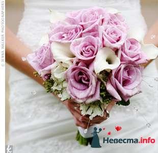 Фото 111947 в коллекции мои фотографии - Свадебный распорядитель Ольга Фокс