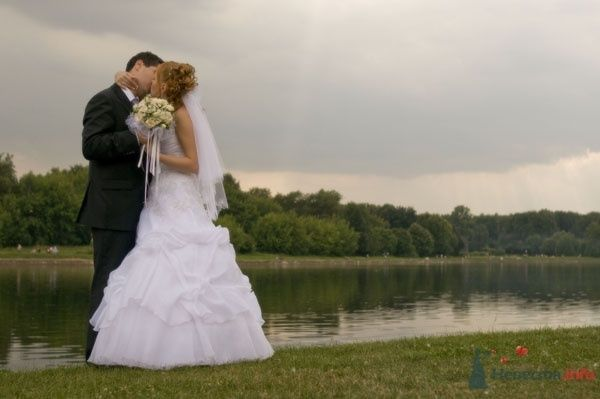 Фото 51571 в коллекции Свадебные