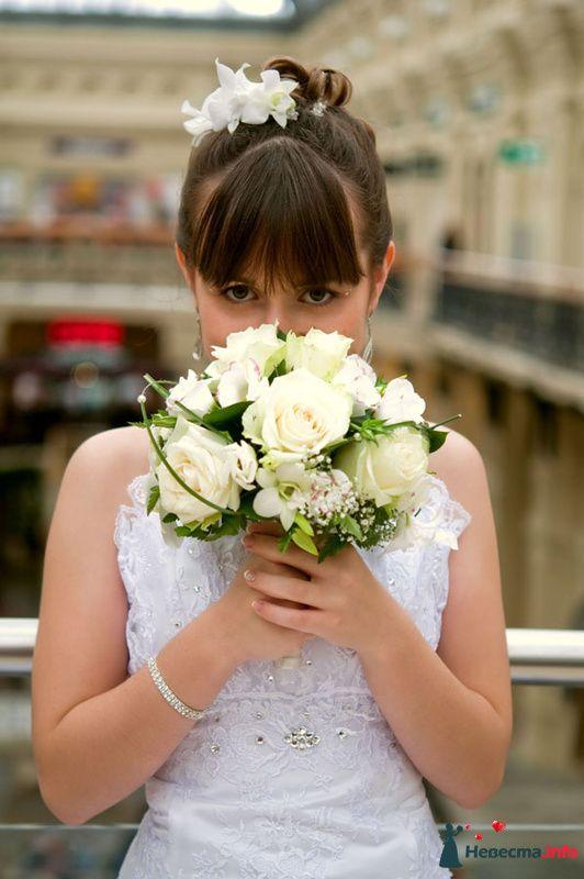 Фото 156468 в коллекции Свадебные - Петрова Виления, свадебный фотограф