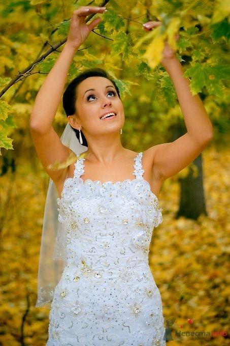 Фото 51833 в коллекции Свадьба Эльдара и Анны - Sunny-Angel