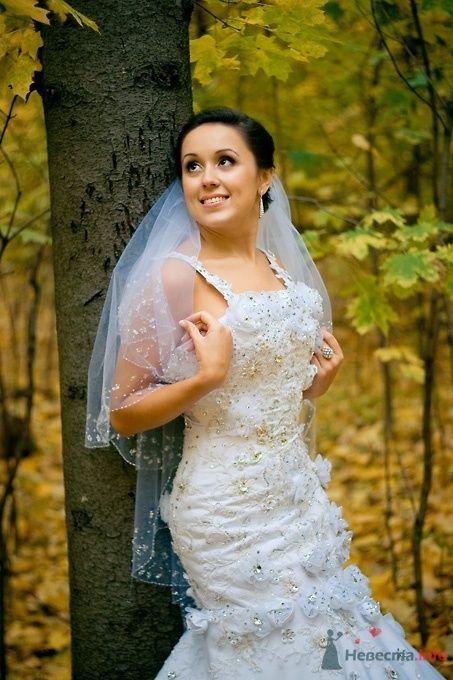 Фото 51839 в коллекции Свадьба Эльдара и Анны - Sunny-Angel