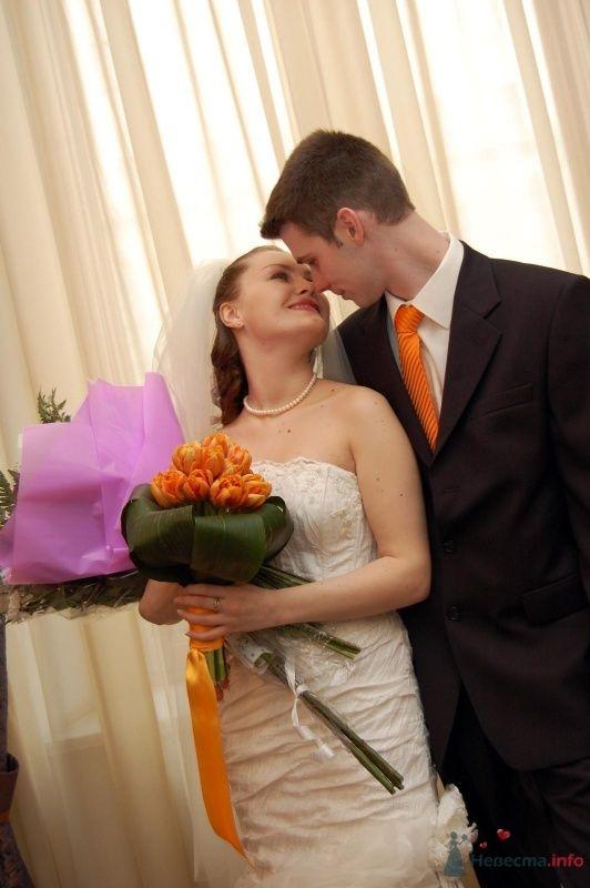 """Фото 25059 в коллекции """"Сквозь тернии к звёздам"""" - наша свадьба состоялась! :)"""