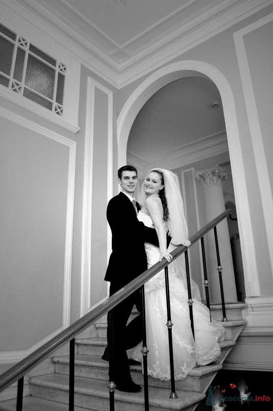 """Фото 25061 в коллекции """"Сквозь тернии к звёздам"""" - наша свадьба состоялась! :) - Minutka"""