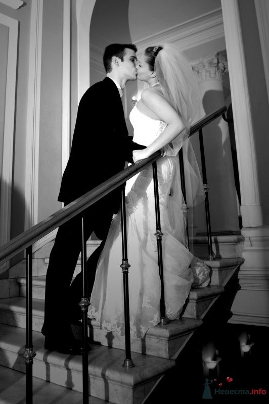 """Фото 25062 в коллекции """"Сквозь тернии к звёздам"""" - наша свадьба состоялась! :) - Minutka"""