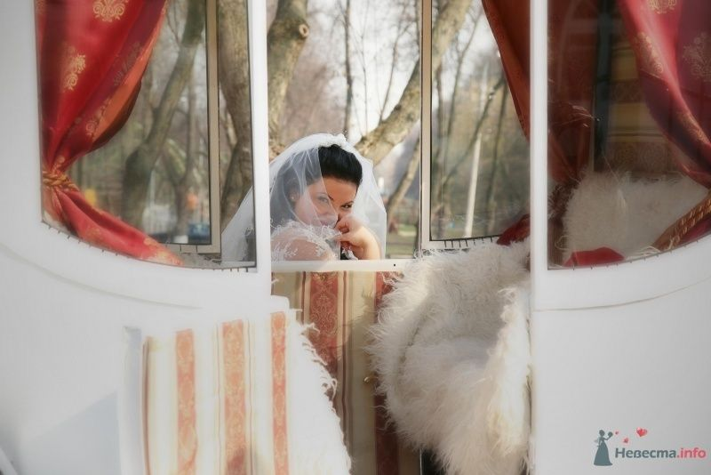 Фото 68510 в коллекции Свадьба - Vesnyshka