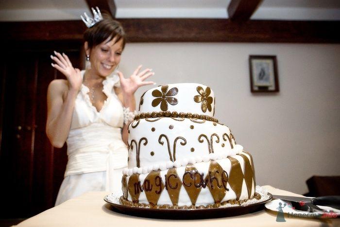 Невеста и свадебный торт - фото 30920 Фотограф Владимир Будков