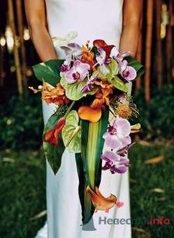 Фото 20595 в коллекции Разное (не мои работы) - Свадебный распорядитель - Бедрикова Оксана