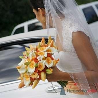 Фото 20633 в коллекции Разное (не мои работы) - Свадебный распорядитель - Бедрикова Оксана