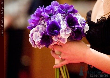 Фото 50501 в коллекции Разное (не мои работы) - Свадебный распорядитель - Бедрикова Оксана