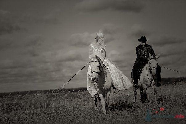 Жених и невеста едут в поле верхом на лошадях - фото 55029 Свадебный распорядитель - Бедрикова Оксана