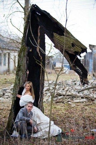 Фото 55032 в коллекции Разное (не мои работы) - Свадебный распорядитель - Бедрикова Оксана