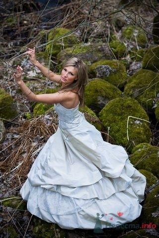 Фото 55033 в коллекции Разное (не мои работы) - Свадебный распорядитель - Бедрикова Оксана