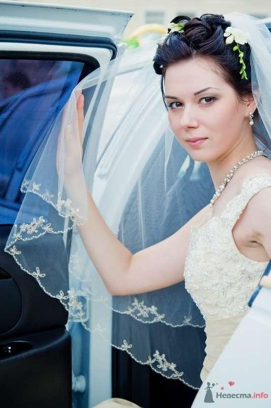 Фото 61676 в коллекции Моя свадьба!!! - Ксения007