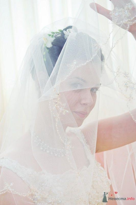 Фото 61678 в коллекции Моя свадьба!!! - Ксения007