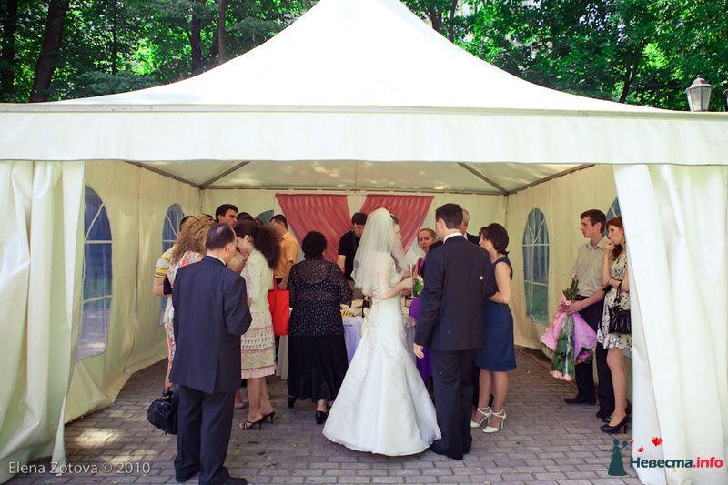 Фото 110370 в коллекции свадьба - pelipewka