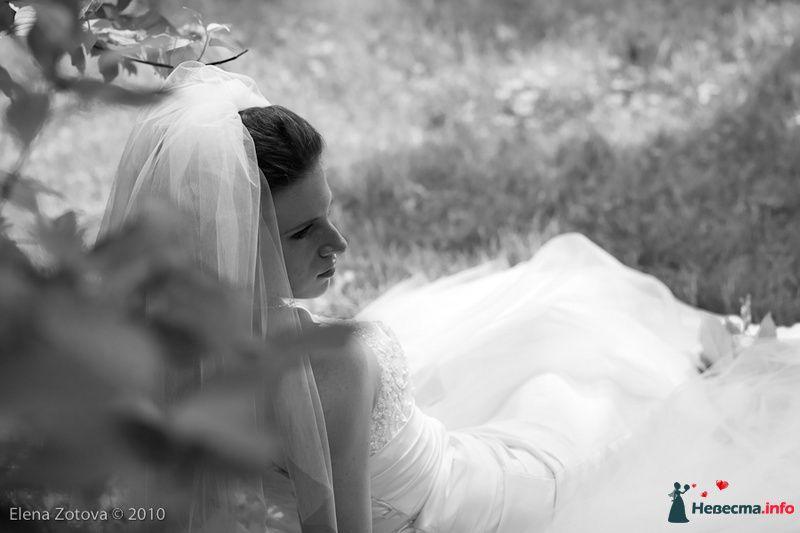 Фото 110380 в коллекции свадьба - pelipewka