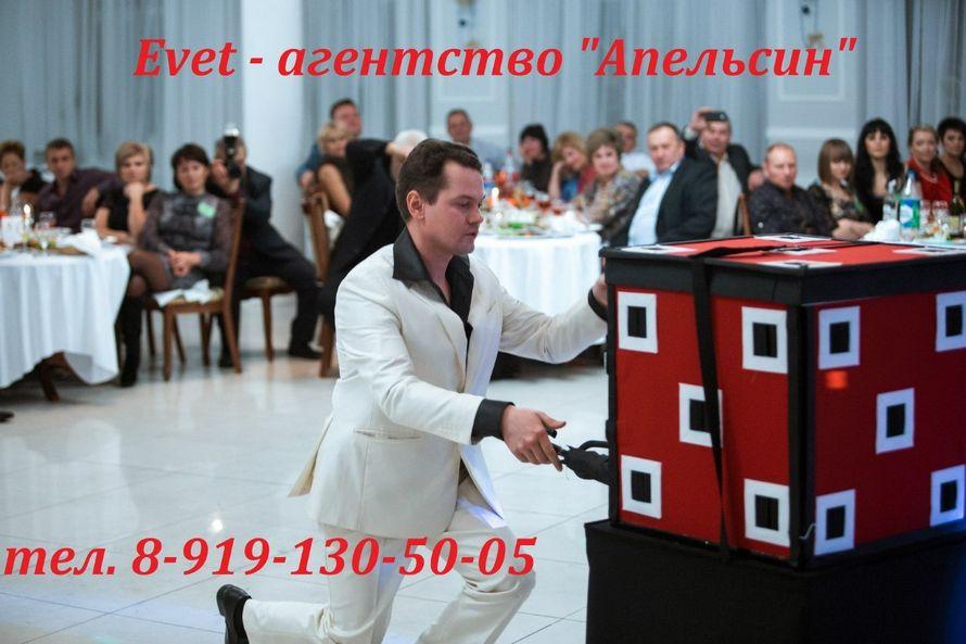 Фото 17253722 в коллекции #фокусник_на_праздник - Ведущий торжеств Анатолий Андросов