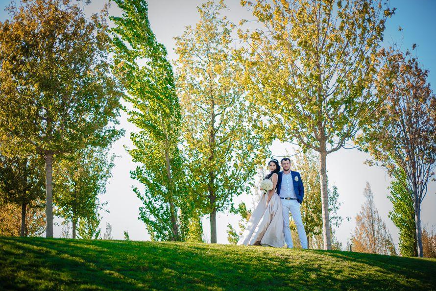 Фото 17276736 в коллекции Свадьбы - FotoFamily studio - фото-видеосъёмка