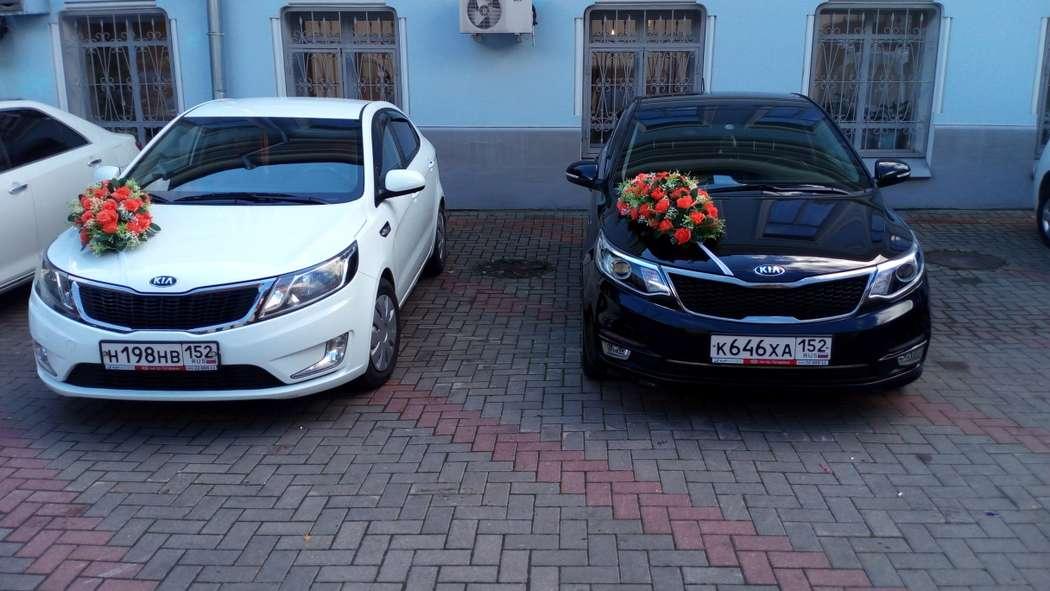 Фото 17395536 в коллекции Свадьбы наших клиентов - Аренда авто Свадебный кортеж