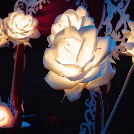 Светящиеся гигантские цветы в аренду