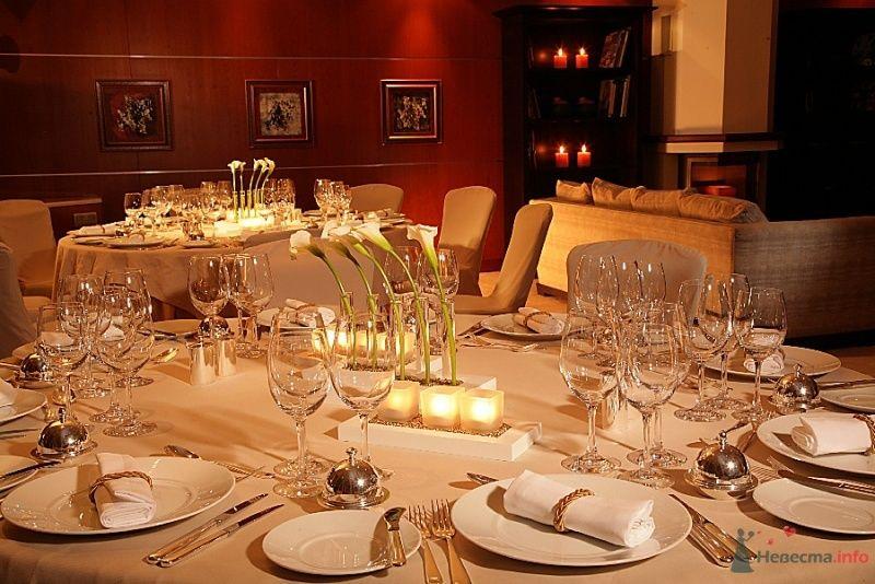 Фото 69133 в коллекции Рестораны - Bellapupa
