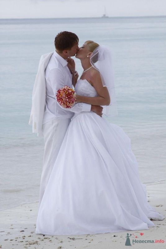 Фото 53136 в коллекции Свадьба! - Лучик Света