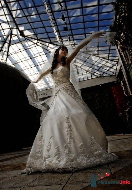 Фото 111250 в коллекции Wedding - Oktava
