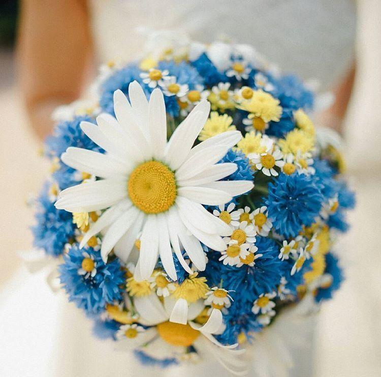 Букет одного, свадебный букет невесты из васильков минск
