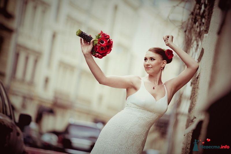 Фото 117628 в коллекции Мои фотографии - VOLKODAVVNV