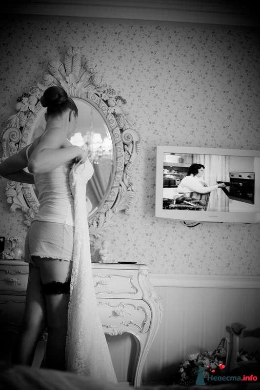 Фото 123258 в коллекции Мои фотографии - VOLKODAVVNV