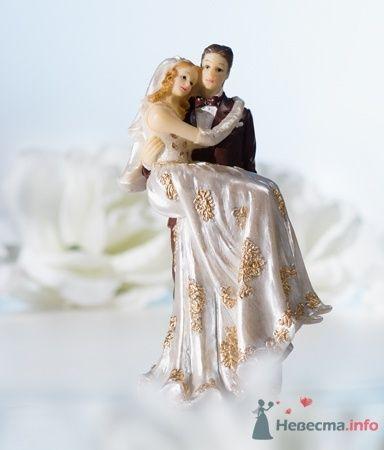 Пара. Невеста на руках в кружевном платье - фото 53558 RosyDog – свадебные аксессуары из Америки и Европы