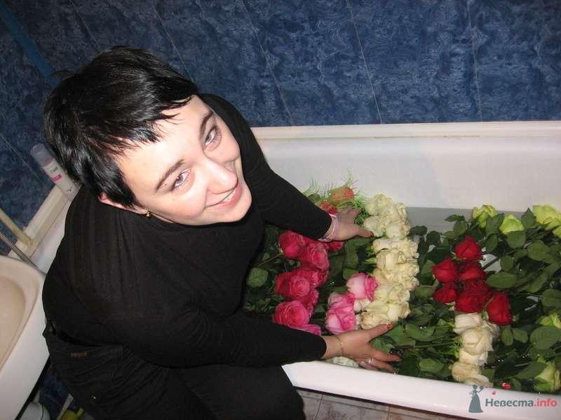 Фото 75565 в коллекции Немного свабебных фото для отчёта :) - Девочка Саша
