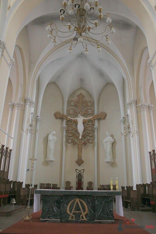 Фото 70803 в коллекции Кафедральный собор непорочного зачатия Пресвятой Девы Марии - Incognito