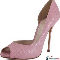 розовые туфли, Casadei