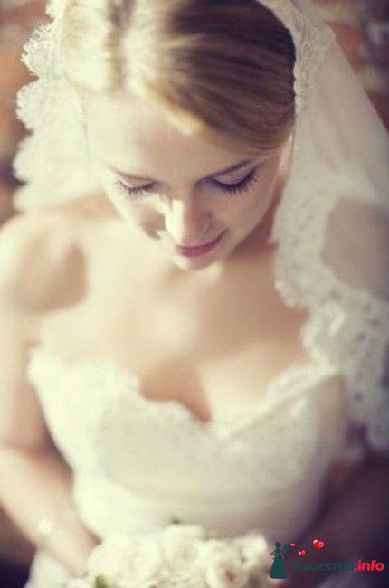 Фото 93264 в коллекции Мои фотографии - OlgaGracheva