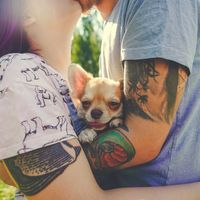 Фотосъёмка Lovestory