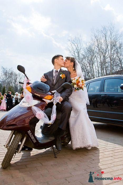 Фото 94066 в коллекции Свадьба 16.04.2010 - Дарьяночка