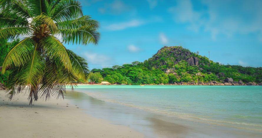 Организация медового месяца или путешествие на Сейшелы