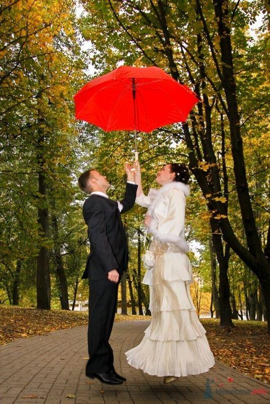 Фото 58693 в коллекции Свадебная фотосессия - fotosv