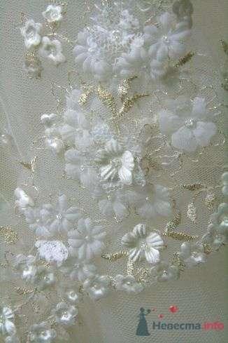 Фото 57340 в коллекции Свадьба: примерка платья - Невеста01