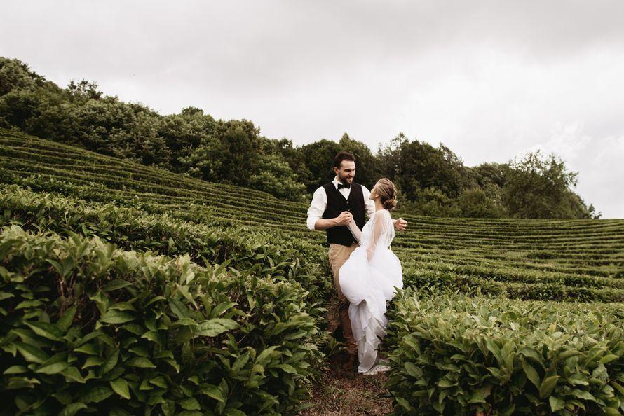 Фото 18909378 в коллекции Портфолио - Christin Wedding - свадебное агентство